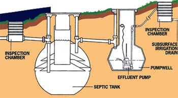 East sussex septic tanks septic tanks sewage treatment for How big a septic tank do i need